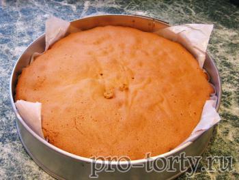 медовый бисквит фото